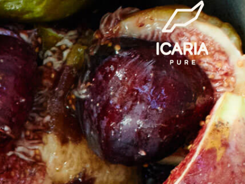 Icaria Pure - CodeFactory